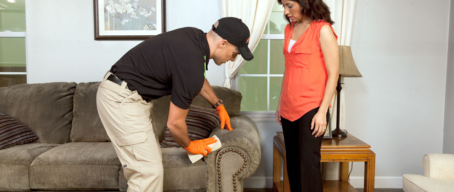 Sunland, CA carpet upholstery cleaning