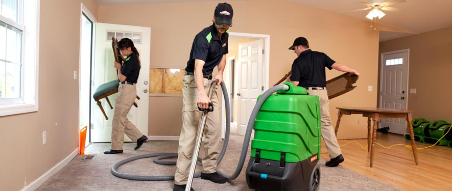 Sunland, CA cleaning services